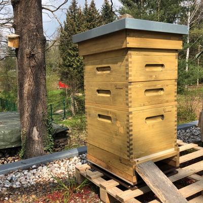 Holzlasur Bienenbeute