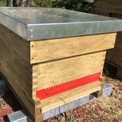 Dadantbeute für Bienenschwarm